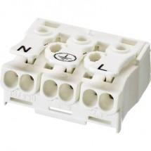 Adels-Contact 041013 Morsetto per illuminazione flessibile: -2.5 mm² rigido: -2.5 mm² Poli: 3 1 pz. Bianco