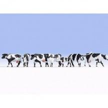 colore Noch 15723 Marrone//Bianco Mucche per modellismo ferroviario