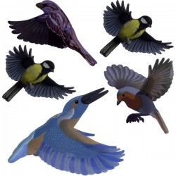 Gardigo Stickers Native Birds Vetrofanie uccelli Dissuasore 1 pz.